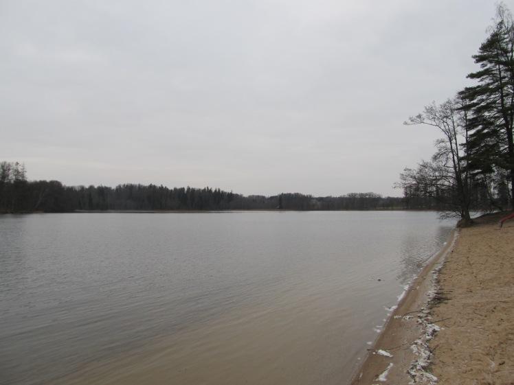 Mini-Eisstückchen am Ufer